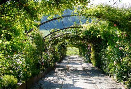 Acc s gratuit aux jardins remarquables du ch teau val for Jardin remarquable